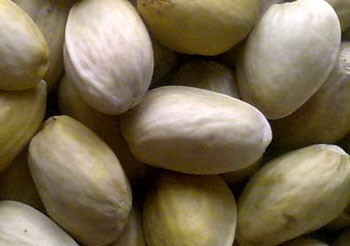 closed Shell Jumbo Pistachio